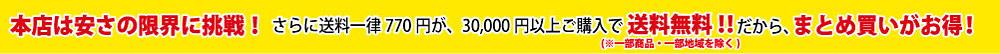 本店は安さの限界に挑戦! さらに送料一律600円が、30,000円以上ご購入で送料無料!!だから、まとめ買いがお得!